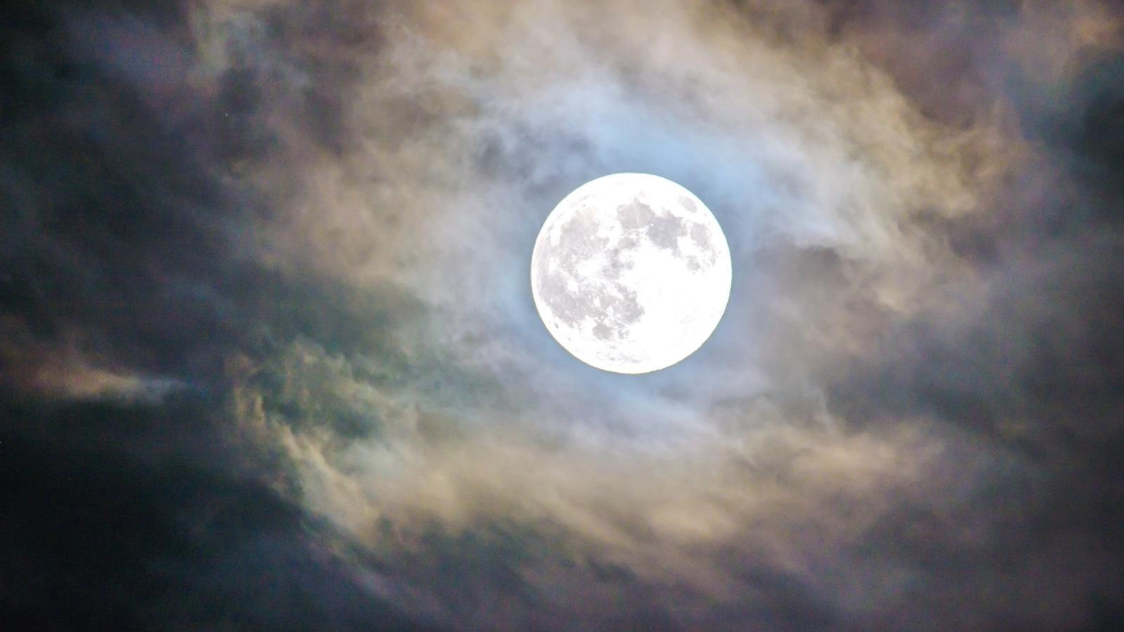 Lunacy, the Full Moon, and Halloween | Anna Elle Liz